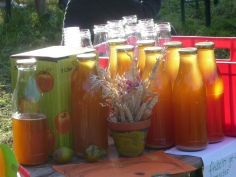 frisch-gepresster-Apfelsaft