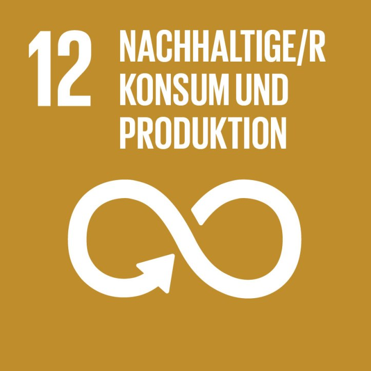 SDG-12_Nachhaltige-r-Konsum-und-Produktion