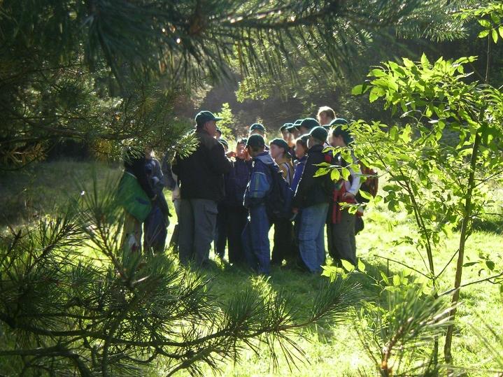 Gruppe voll Aufmerksamkeit, Foto: Jugendwaldheim Loppin
