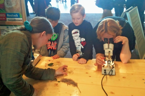 Beim Mikroskopieren